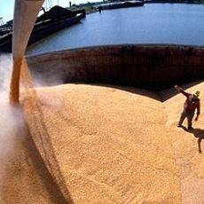 перевалка зерна в одессе