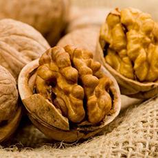экспорт грецкого ореха украина